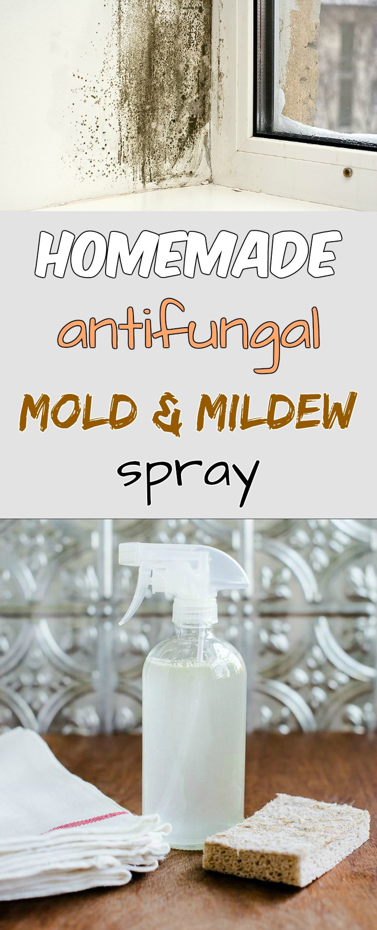 Homemade Antifungal Mold And Mildew Spray