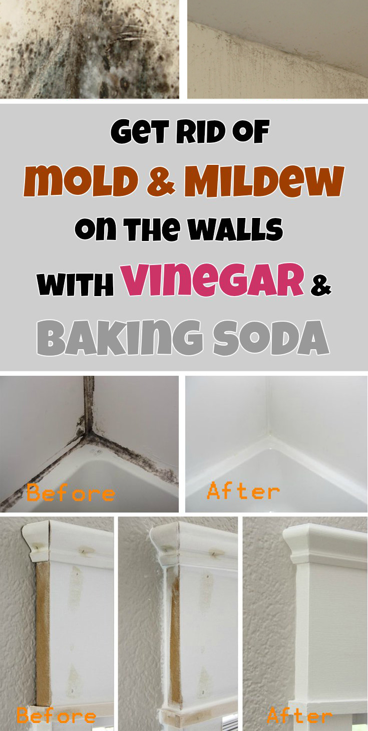 Get Rid Of Mold Mildew On The Walls With Vinegar And Baking Soda - Products to remove mold from bathroom