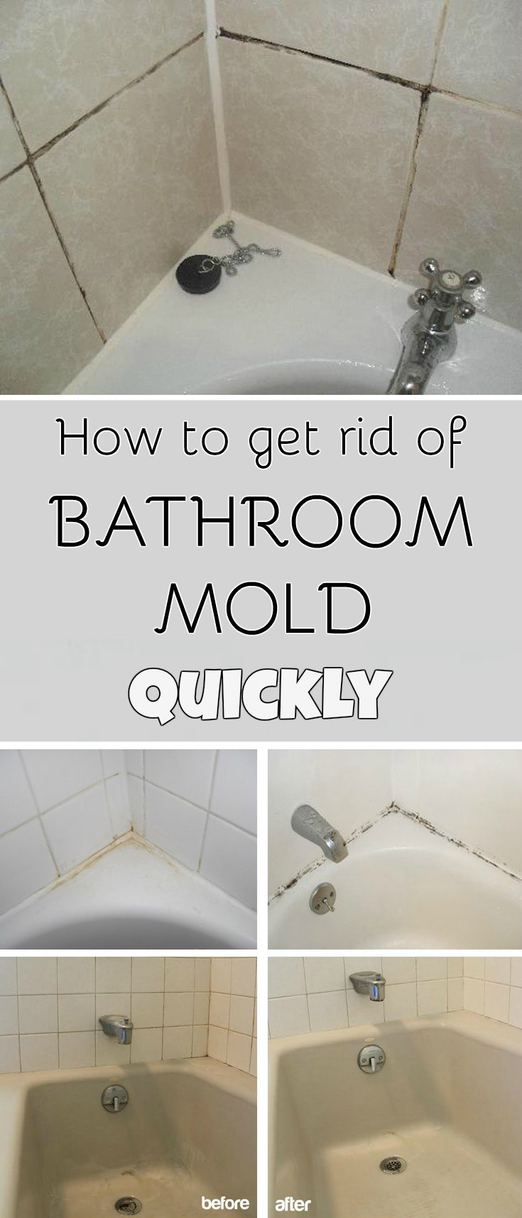 How to get rid of bathroom mold quickly for Mildew on walls in bathroom